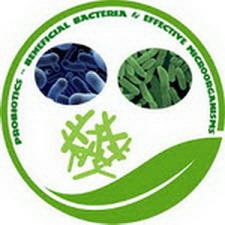 Use of Probiotics in Aquaculture